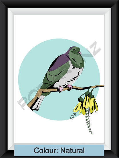 Limited Edition Wood Pigeon - various colours