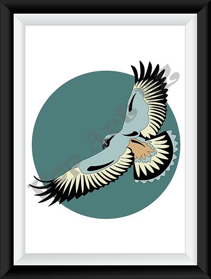 Limited edition native Kea bird in flight - Earth