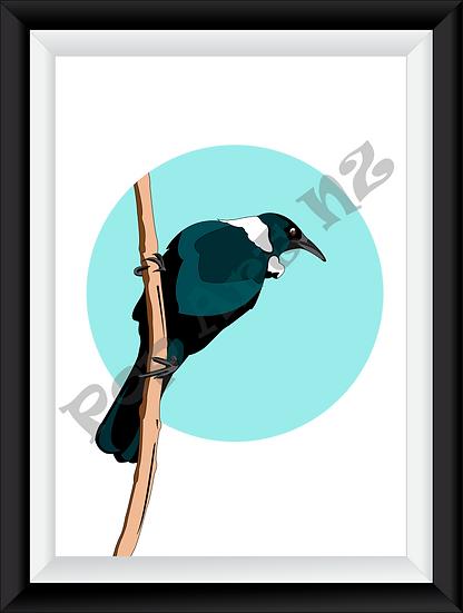 Limited edition native Tui bird NZ - Sky