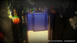 Halloween 20015 (2).jpg
