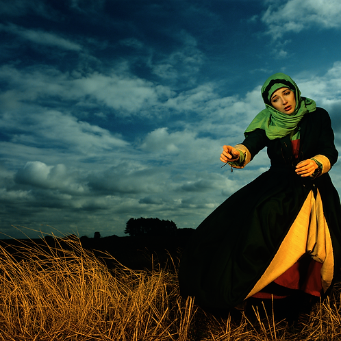 Kate Bush in the Wheat Field  (Image 3)