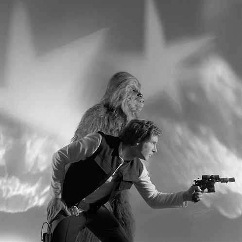 Han and Chewy in Action!!