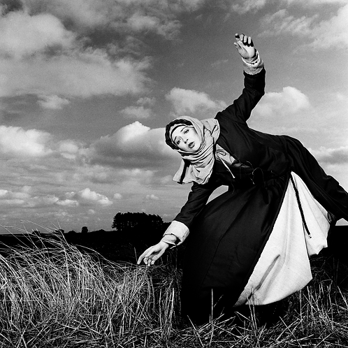Kate Bush in the Wheat Field (Image 1)