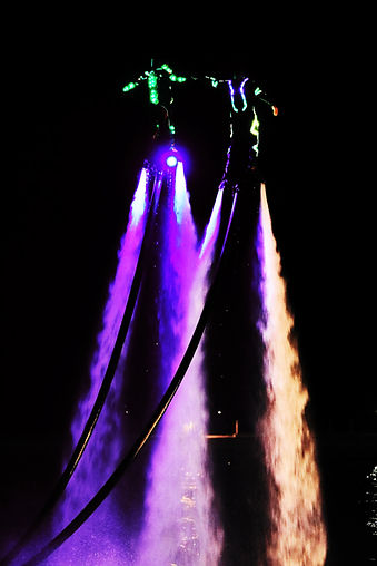 Double Flyboard Night Show