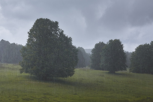 Rain in the dark