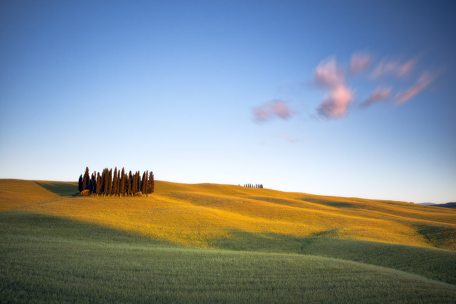 Cypress-Hill.jpg