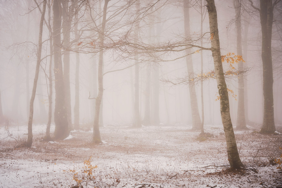 Winter103