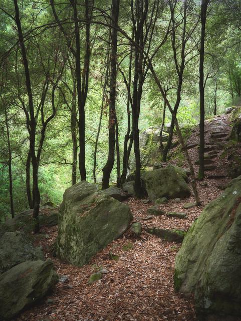 Sentiero dei monaci