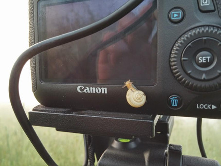 Recensione: Canon 6D