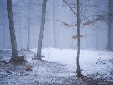 Winter101