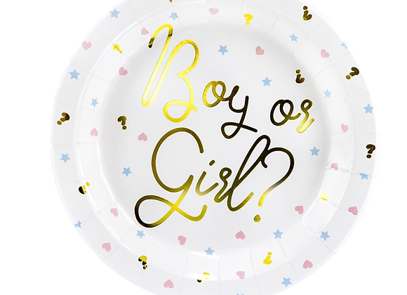 Boy Or Girl Plates  23 cm (x6)