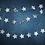 Thumbnail: Silver Star Garland