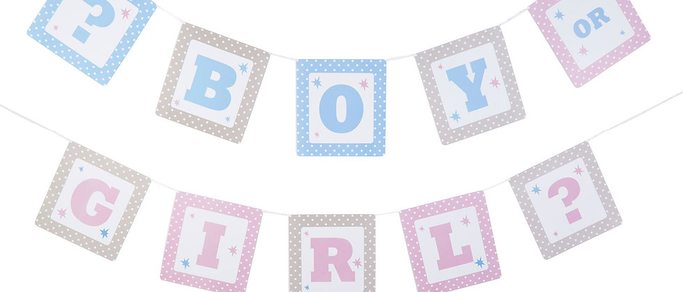Boy Or Girl Garland