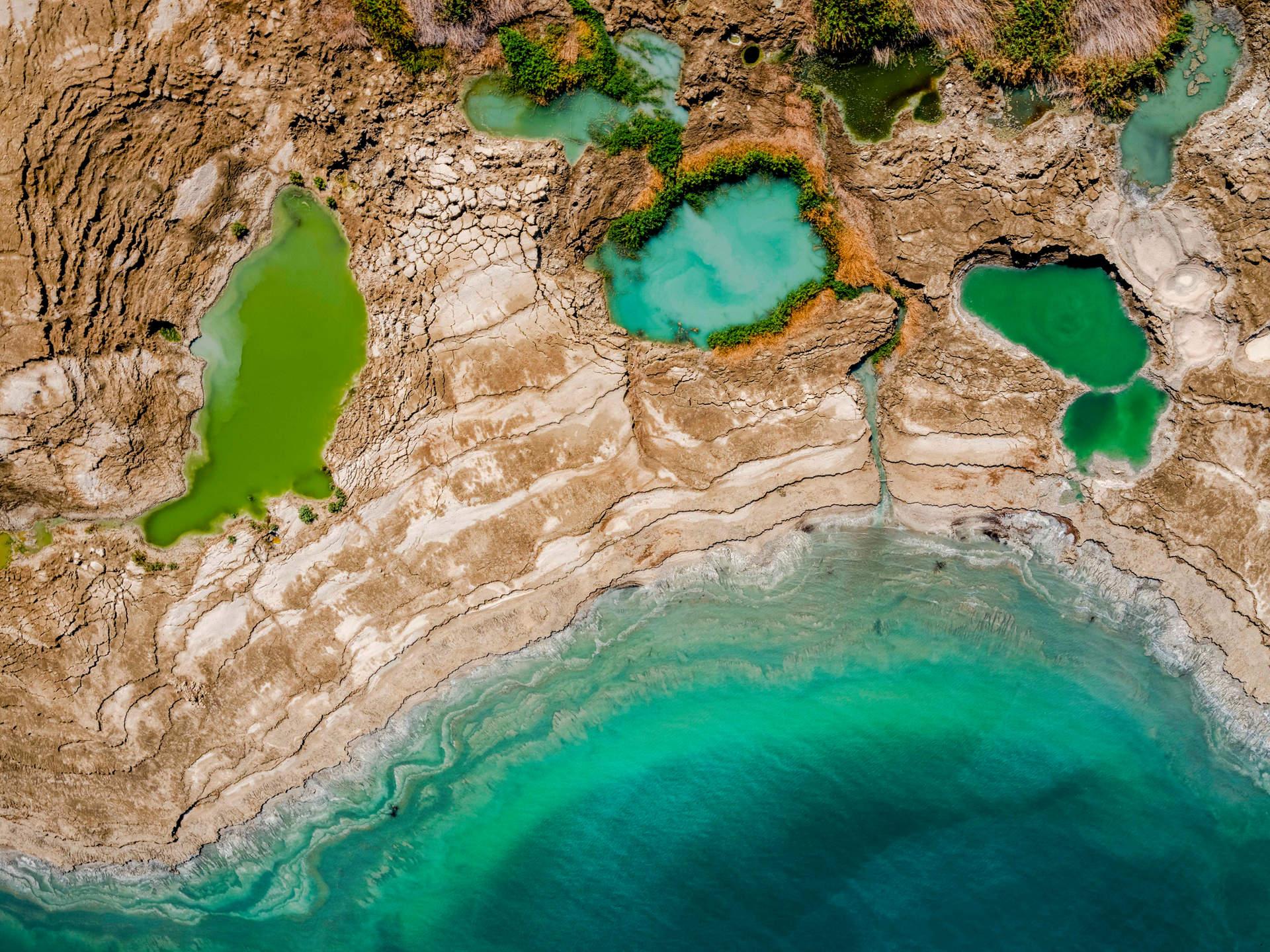 'Pools of Life', Dead Sea, Israel