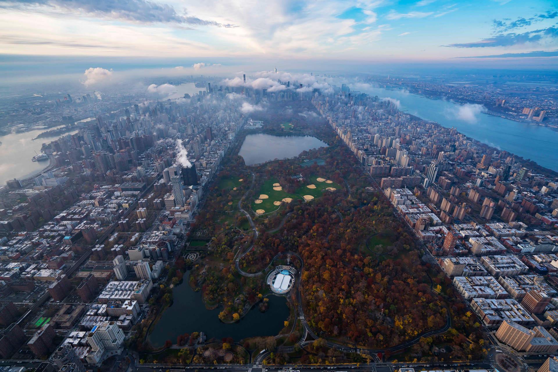 'Park Life', Central Park, NYC