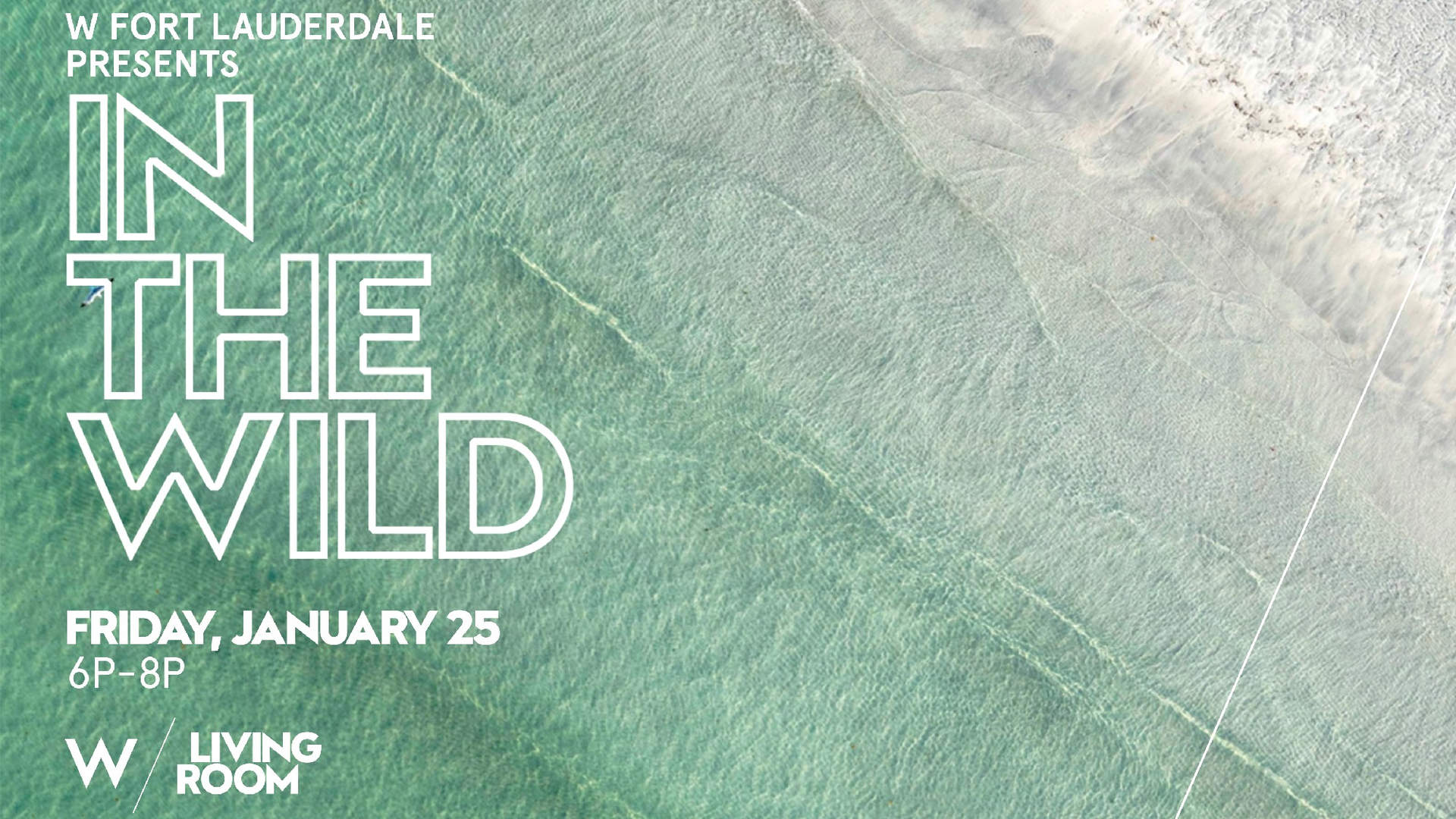 'In The Wild' Installation