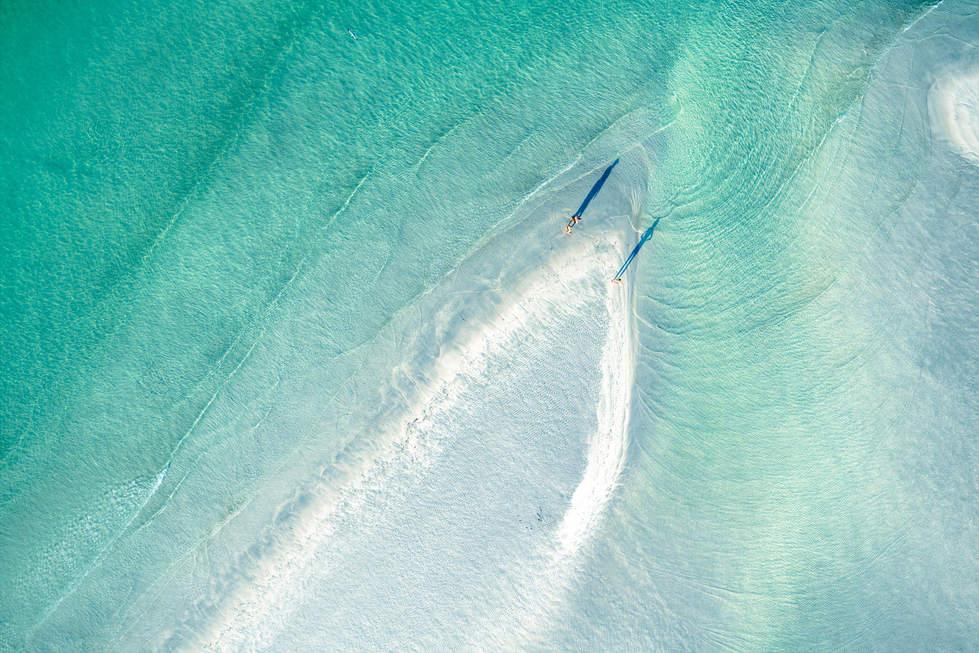 'Feathers', Key West, Florida