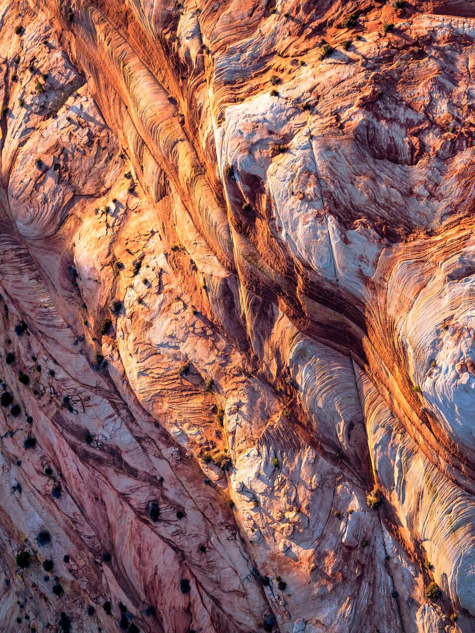 'Story Lines' - Zion National Park, Utah