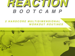 $20 DVD Bootcamp - Yes - Please