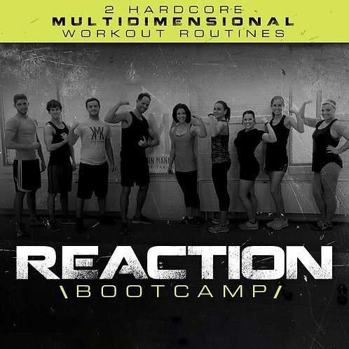 REACTION BOOTCAMP Level Two Digital PREORDER