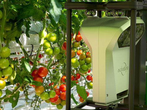 Technology and the future of horticulture: a view from Canada