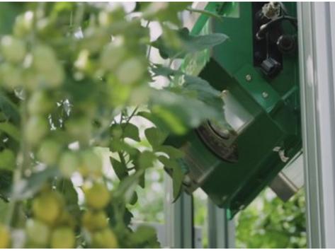 Robot als 'video ref' helpt Kees Stijger scouten