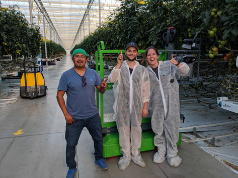 Ecoation 2.0: New headquarters, robots all over the world and an enhanced executive team