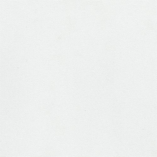 palmera5100.jpg