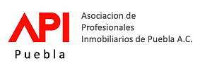 logo_api_puebla.png