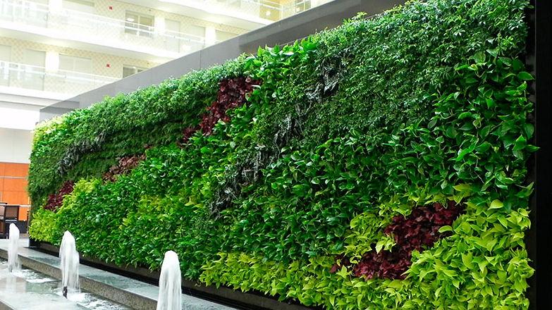 Muros-verdes-en-puebla.jpg