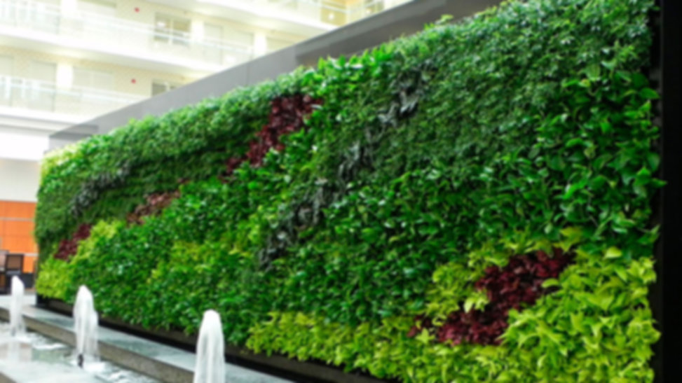 Muros-verdes-puebla.jpg
