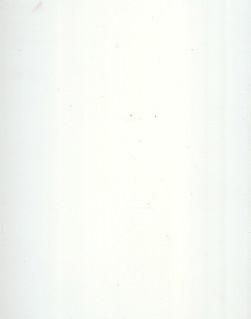 pvc_plana_white.jpg