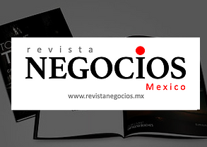 www.revistanegocios.mx