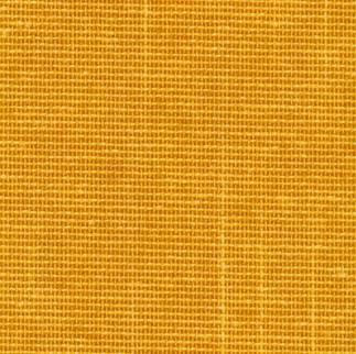 yolk yellow.jpg