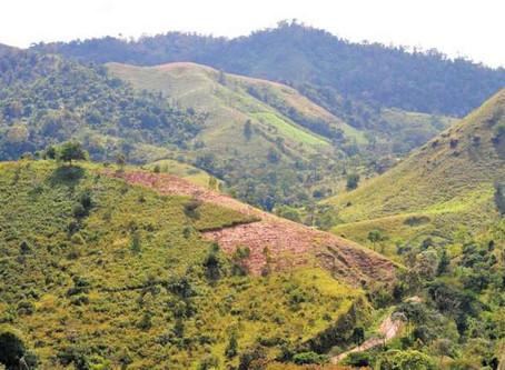 Una guerra silenciosa en Nicaragua: masacran a indígenas para despojarlos de sus tierras