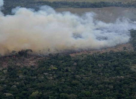 La deforestación amenaza a los últimos indígenas aislados de Colombia