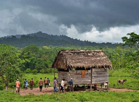 Indigenous leaders in Nicaragua denounce massacre in Mayangna territory