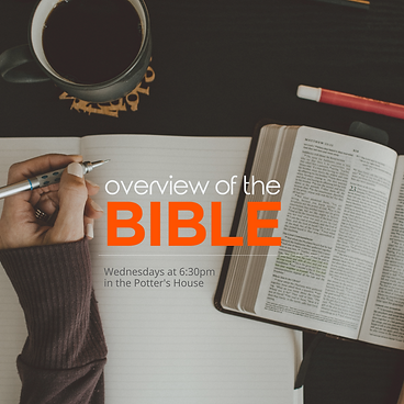 Overview of the Bible website graphic.pn