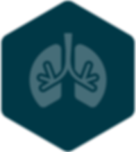 lungs_hexagon_icon.png