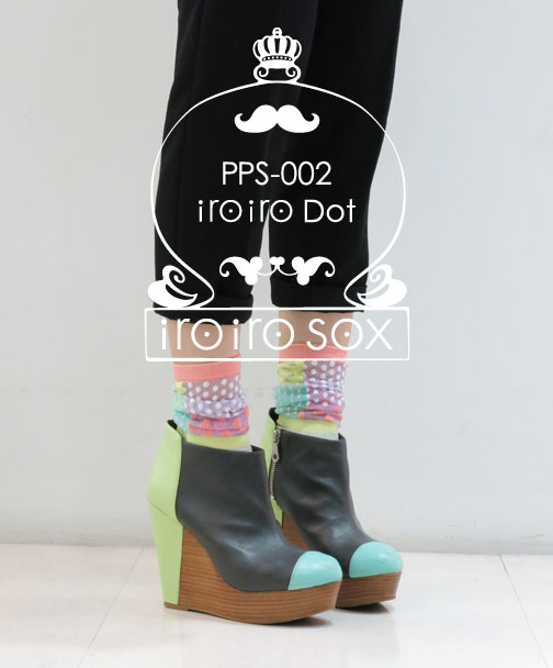 pps02_00a.jpg