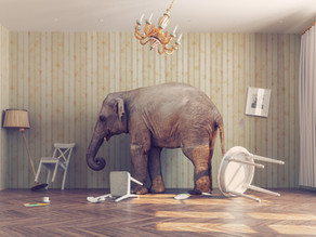 The elephants in the classroom - The realities we need to face as language educators