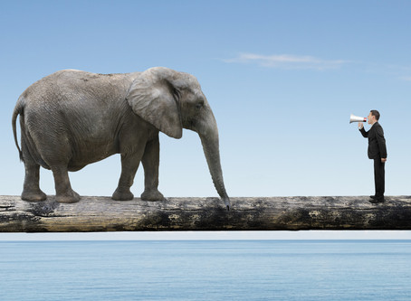 More elephants in the classroom: The Communicative Approach