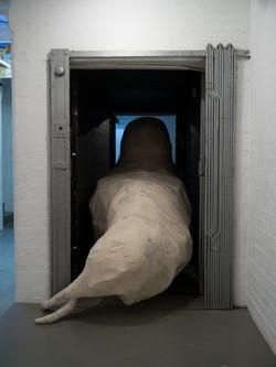 Walrus (back)
