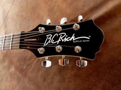 BC Rick Mockingbird Acrylic