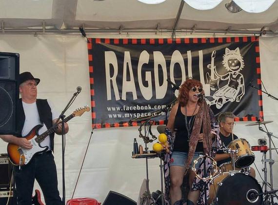 Ragdoll @OCStreet Fair 2017