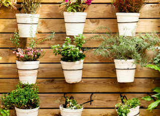 Container Gardening Upgrades for a Fresh Spring