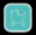 app botton outline.png