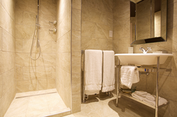 Bathroom in the lark room
