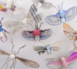 insecta_pharma_1.JPG