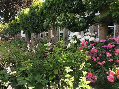 De tuin van het Eva van Hoogeveenhof in de zomer.